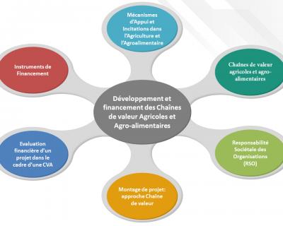 Protégé: Développement et financement des Chaînes de valeur Agricoles et Agro-alimentaires